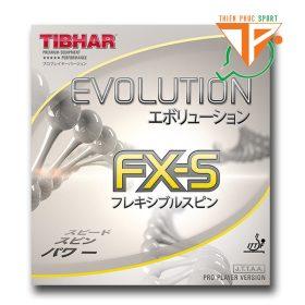 Mặt vợt Tibhar Evolution FXS