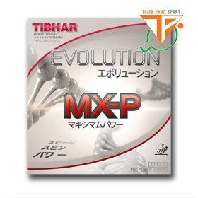 Tibhar Evolution mxp